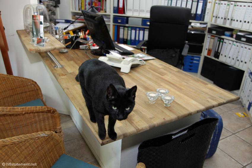 Null Bock auf Schreibtischarbeit