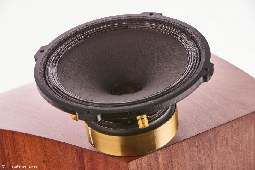 Shown here is the Supravox mid-woofer without dust cover